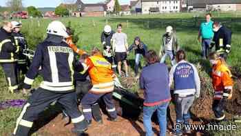 Helfer ziehen in Vahle Pferd aus einem Graben   Uslar - HNA.de