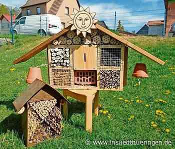 Aufruf: Bauen Sie ein Insektenhotel für die Bienen - inSüdthüringen