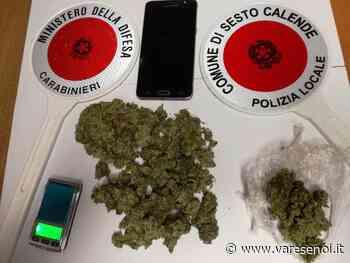 Sesto Calende, trovato in strada con la marijuana nascosta negli slip - VareseNoi.it