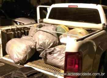 Mais de 200 quilos de maconha são apreendidos em Senhor do Bonfim - Acorda Cidade