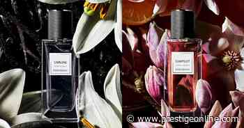 Yves Saint Laurent Beauty launches two new fragrances inspired by capelines and jumpsuits - Prestige Online