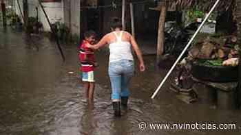 Se inundan colonias en Huixtla - NVI Noticias