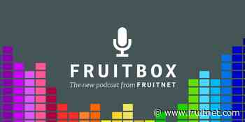 Listen to Fruitbox, keep fully informed