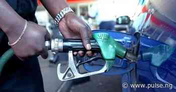 Filling stations in Lafia still sell petrol at old price - Pulse Nigeria