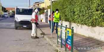 Porto Torres: via allo sfalcio dell´erba nei marciapiedi - Alguer.it