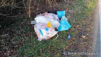 Beccato dalla foto-trappola un cittadino di Samarate mentre abbandona rifiuti - Settenews