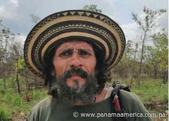 Indigente muere atropellado por un médico en Los Algarrobos de Dolega - Panamá América