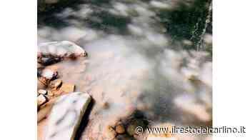 """Polinago, acque inquinate nel fiume Rossena: """"Ci sono delle verifiche in corso"""" - il Resto del Carlino"""