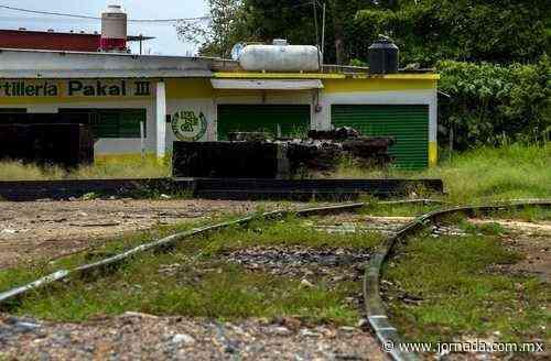 Juez federal otorga amparo contra Tren Maya en Palenque - La Jornada