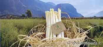 Spuntano gli asparagi Margarete di Terlano - qbquantobasta.it - Fabiana Romanutti
