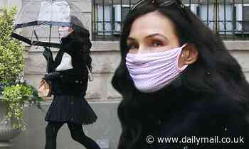 Famke Janssen keeps her mask on as she steps out to grab some takeaway for isolation - Daily Mail