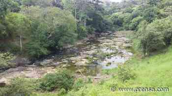 Ambientalistas piden medidas de conservación para reserva hidrológica en Macaracas - La Prensa Panamá