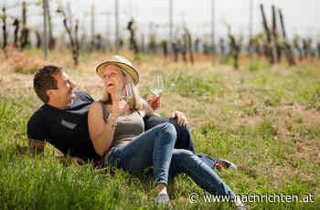 10 Weine aus dem Weinviertel - nachrichten.at