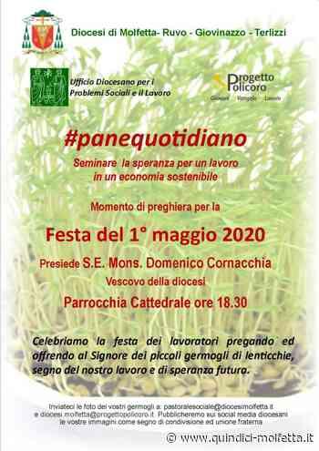 Un 1° maggio diverso, Psl e Progetto Policoro organizzano un momento di preghiera per i lavoratori nella diocesi di Molfetta - Quindici - Molfetta
