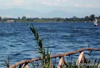 Liquami sversati nel Lago Patria, sequestrato allevamento di bufale - InterNapoli.it