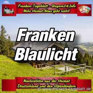 Hallstadt - Ab durch die Hecke? Nein betrunken in den Wildschutzzaun - Bayern24