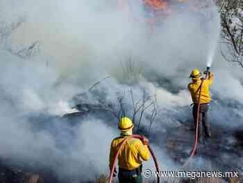 Liquidan el 85% del fuego en Ichkabal, Bacalar y el 100% en Pájaros - Meganews