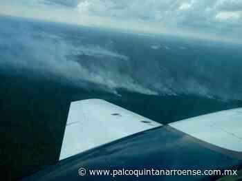 Atentos #Semarnat y #Conafor por el incendio forestal en Bacalar - Palco Quintanarroense