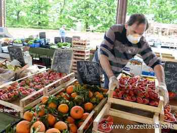 Dogliani: via libera anche al mercato del martedì - http://gazzettadalba.it/