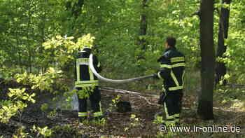 Feuerwehreinsatz: Brand in Guben am Bahndamm - Lausitzer Rundschau