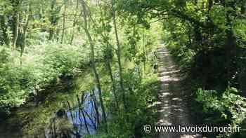Les berges du canal de Seclin et de la Deûle rouvrent aux promeneurs - La Voix du Nord