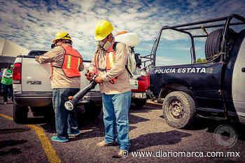 Sanitizan transporte público en Tehuantepec - Diario Marca de Oaxaca