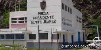 """Cierran ciclo agrícola en Presa """"Benito Juárez"""" de Tehuantepec - El Imparcial de Oaxaca"""