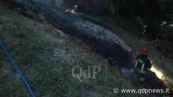 Incendio su una collina a Cornuda, il rogo si è sviluppato nelle vicinanze di via Monte Pasubio: danni contenuti - Qdpnews.it - notizie online dell'Alta Marca Trevigiana