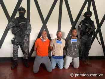 """Faes detiene a otros tres """"mercenarios"""" en la Colonia Tovar - primicia.com.ve"""