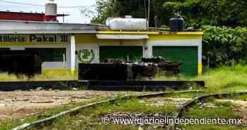 Otorgan amparo contra Tren Maya en Palenque - Diario El Independiente BCS
