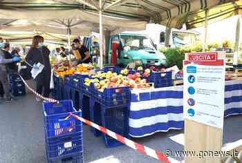 Il mercato di Quarrata riparte e supera la prova - gonews
