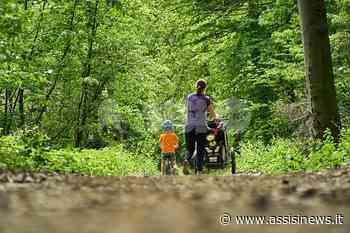 Tentativo di rapimento di un bambino a Bastia Umbra? Indagini in corso - Assisi News