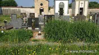Desio, ritrovamento shock nel cimitero: il corpo privo di vita di un uomo - MBnews