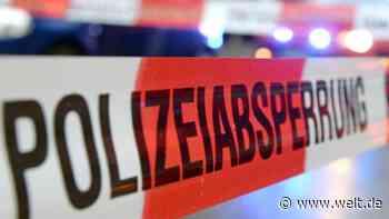 Mann kommt bei Verkehrsunfall bei Vogelsdorf ums Leben - DIE WELT