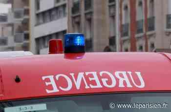 Noailles : il crache sur les pompiers et insulte les gendarmes - Le Parisien
