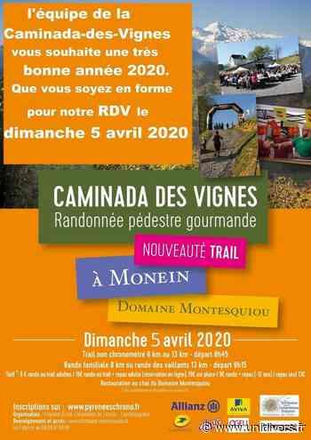 Caminada des vignes Monein 5 avril 2020 - Unidivers