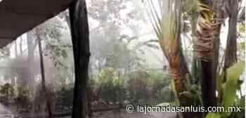 Tromba azota Ciudad Valles – La Jornada de San Luis - La Jornada San Luis