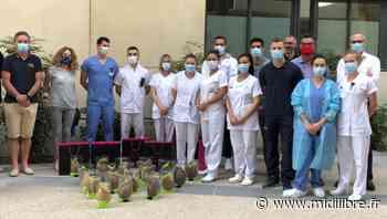 Castelnau-le-Lez : un peu de douceur pour le personnel de la clinique du Parc - Midi Libre