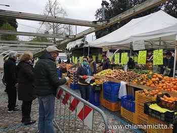 Bellaria: riparte il mercato anche a Igea Marina - ChiamamiCittà