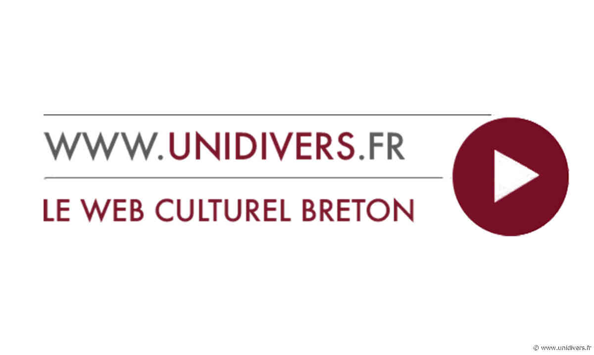 Puces-brocante en salle 8 novembre 2020 - Unidivers