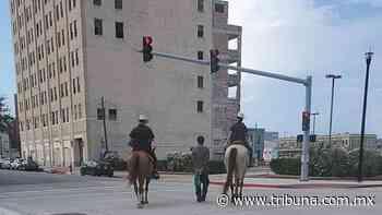 Hombre negro es exhibido en la calle atado por 2 policías blancos a caballo - La Tribuna (México)