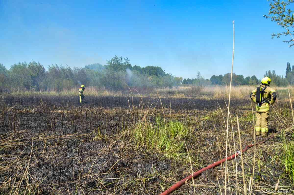 Flinke natuurbrand langs Zuiderlingedijk in Spijk - ZHZActueel - ZHZActueel