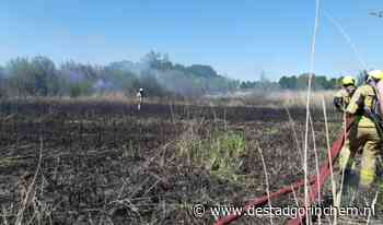 UPDATE: Brandweer Gorinchem druk bij rietbrand in Spijk - DeStadGorinchem.nl