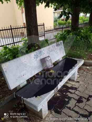 PIANEZZA - Idioti in azione: panchina imbrattata con olio da motore - QV QuotidianoVenariese