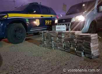 Senhor do Bonfim: PRF apreende 109 quilos de cocaína e prende batedor na BR-407; veja vídeo - Voz da Bahia