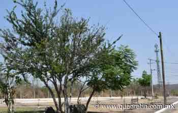 Cerrará Sahuayo sus accesos para evitar propagación del Covid 19 - Quadratín - Quadratín Michoacán