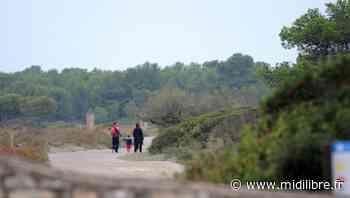 Frontignan : le massif de la Gardiole, les salins et le bois des Aresquiers rouvrent au public - Midi Libre