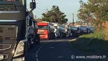 Frontignan : le ballet des camions devant le dépôt GDH - Midi Libre