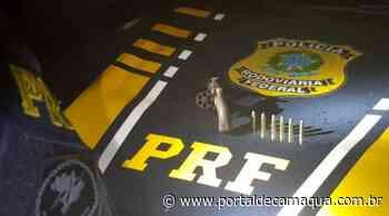 Polícia Rodoviária Federal prende criminoso armado na BR-116 em Esteio - Portal de Camaquã