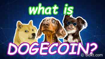 What Is Dogecoin? The Ultimate DOGE Crypto Guide [2020] - Blokt